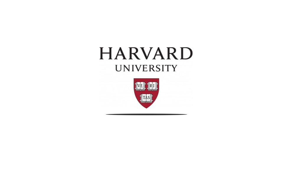 harvard hollywood and designated drivers movies and