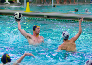 jesuit water polo makes a splash the roundup